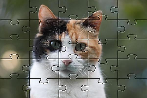 Jigsaw Puzzles | Online Jigsaws Love
